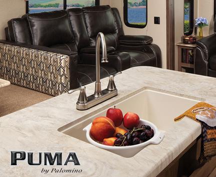 Palomino Puma